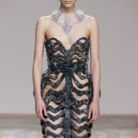 Anticipating ... Iris Van Herpen