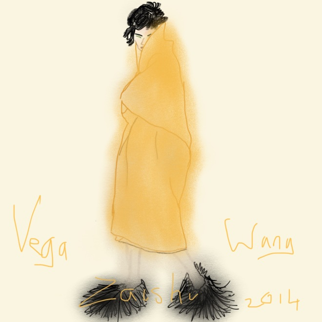Plus Black blog Vega Zaishi Wang 2014