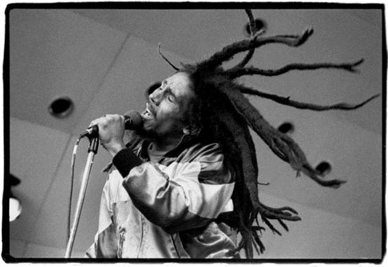 Marley by David Corio