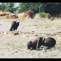 Kevin Carter, photographer