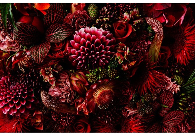 Makoto Azuma - from 'Enclyopedia of Flowers Part 2'