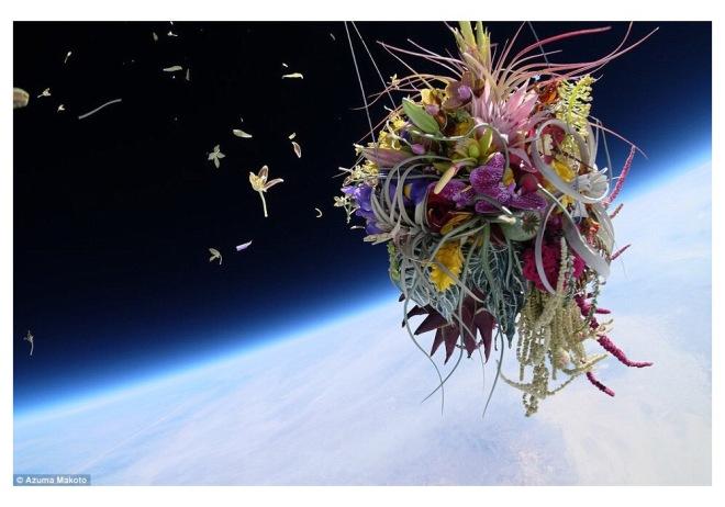 Makoto Azuma - exhibition work