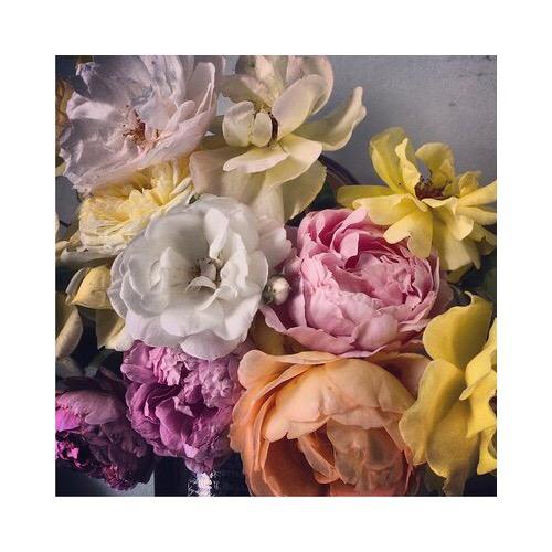 Flora Starkey, bespoke floral designer