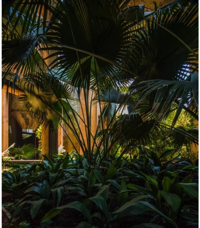 Ricardo Bofill at La Fabrica: The Garden