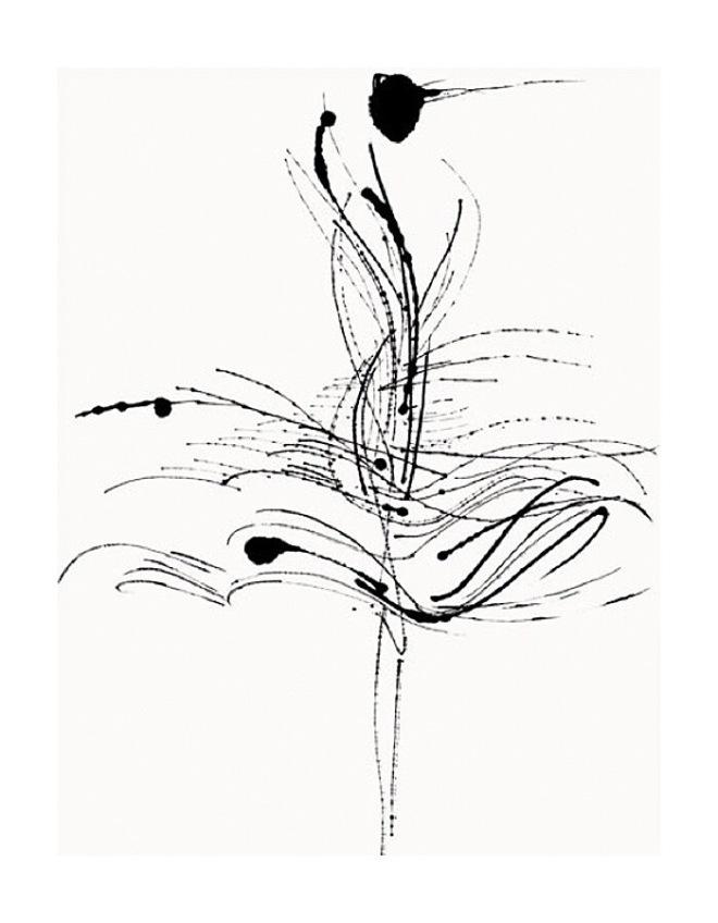 Illustrator Tobie Giddio: Jungle Fowl II Image source: www.tobiegiddio.com