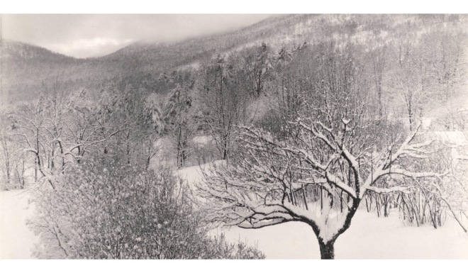 Untitled (Winter Landscape, Lake George, New York) 1923, Alfred Stieglitz