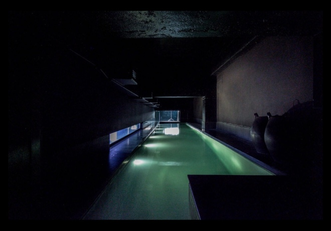 David Adjaye's Lost House: swimming pool