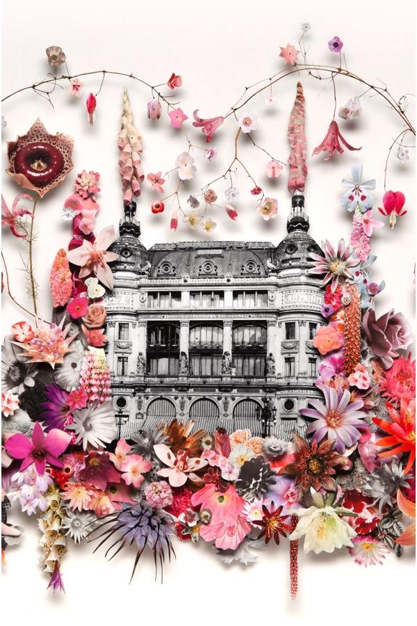 Anne Ten Donkelaar: Illustration For 'Printemps'