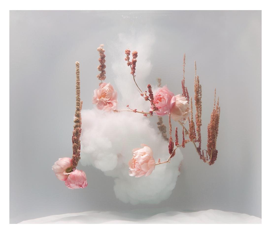 Anne Ten Donkelaar: From Underwater Ballet series
