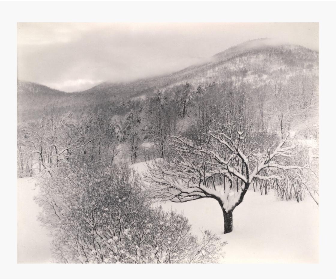 Alfred Stieglitz: Untitiled (Winter Landscape, Lake George, New York), 1923. Image courtesy: SFMOMA