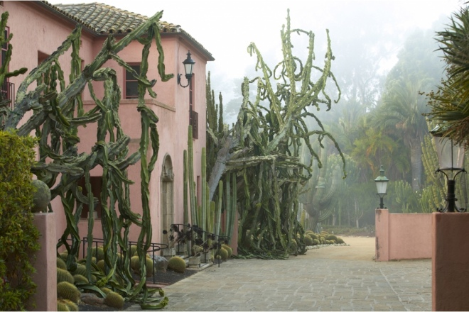 Book: Dreamscapes with Photography by Claire Takacs. Giant weeping succulents at the entrance of the 1890s house.