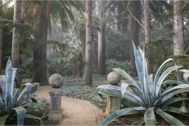 Book: Dreamscapes with Photography by Claire Takacs. Lotusland: Giant blue Agave x franzosinii stand guard at the entry to the Blue Garden, while Festuca glauca grasses provide a ground cover beneath Chilean wine palms.