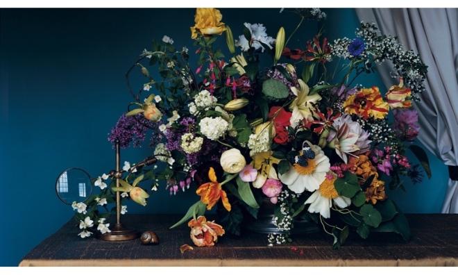 Livia Cetti Portfolio Image © 2017 The Green Vase.